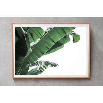 Bali Interiors Products Print Leaf Motif 2 on frame-1