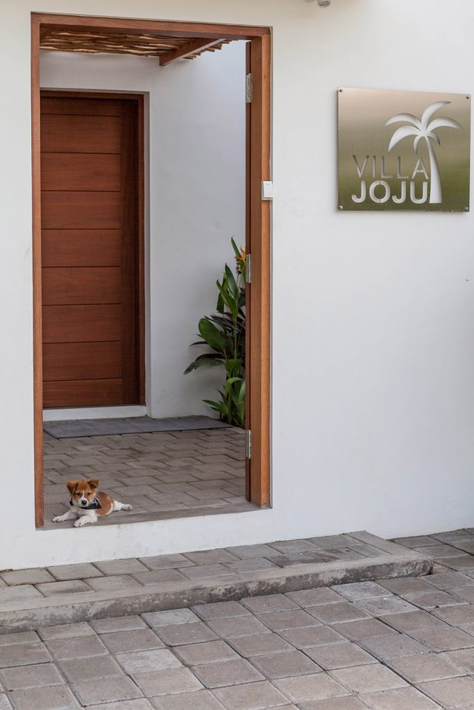 Villa JOJU- Bali Interiors