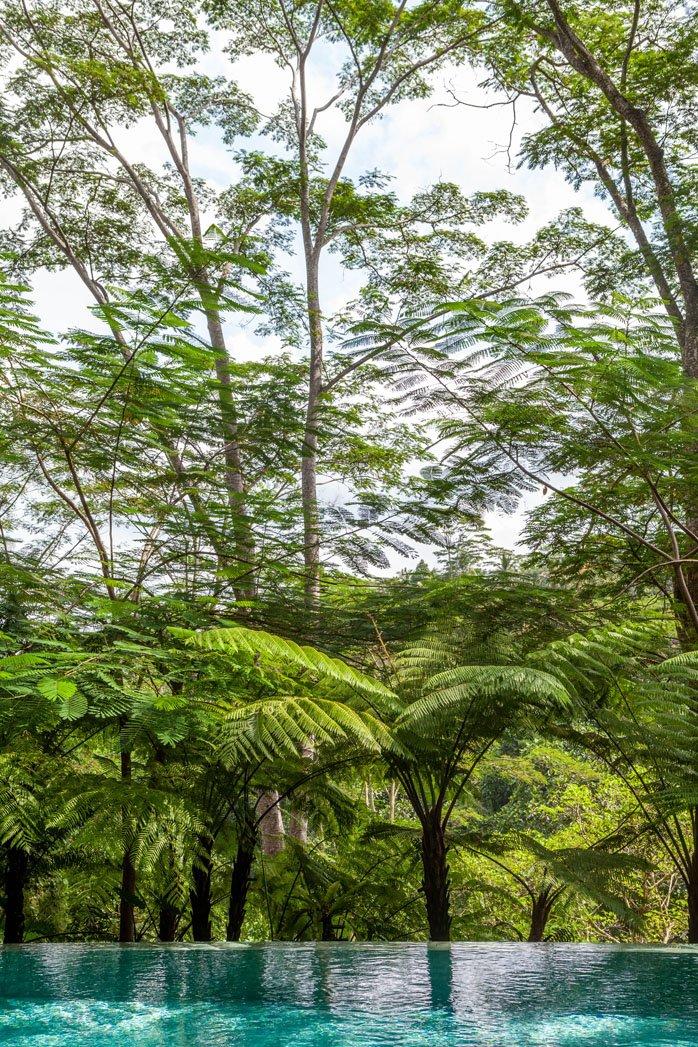 Bali Interiors- Villa naga Putih -ubud