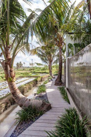 Bali Interiors- Canggu