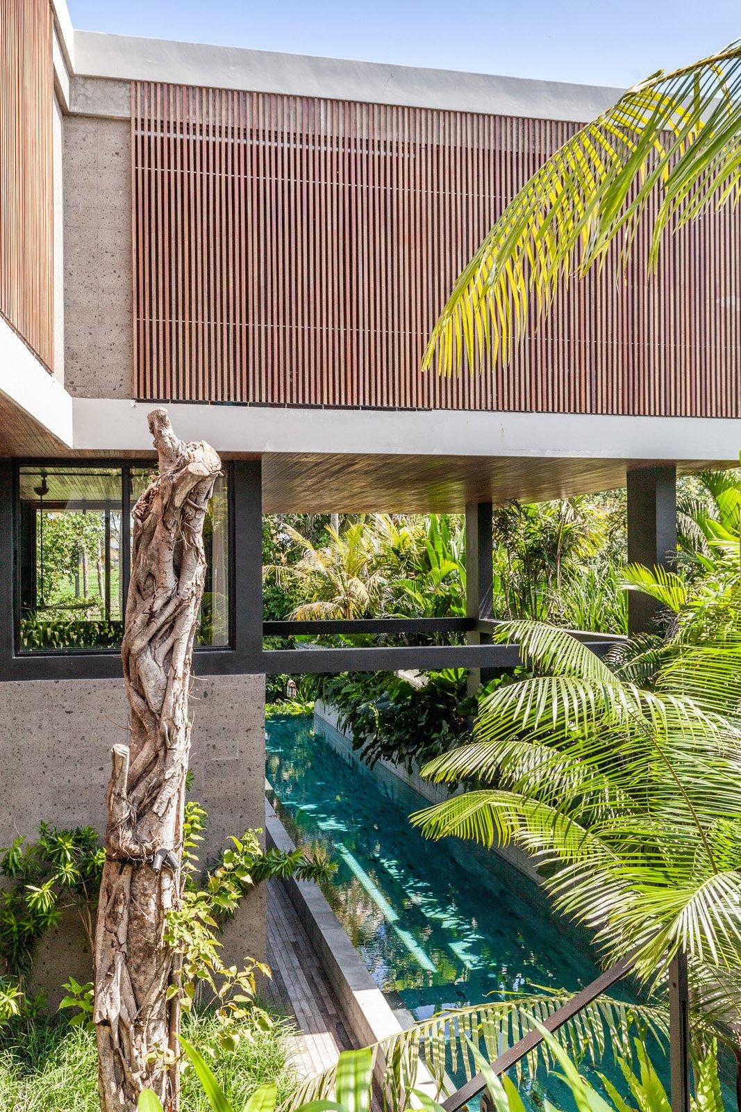 Bali Interiors- River house