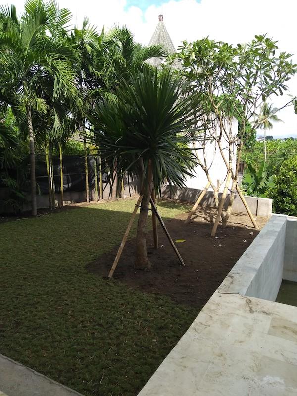 Bali Interiors Build Diary 33 the garden