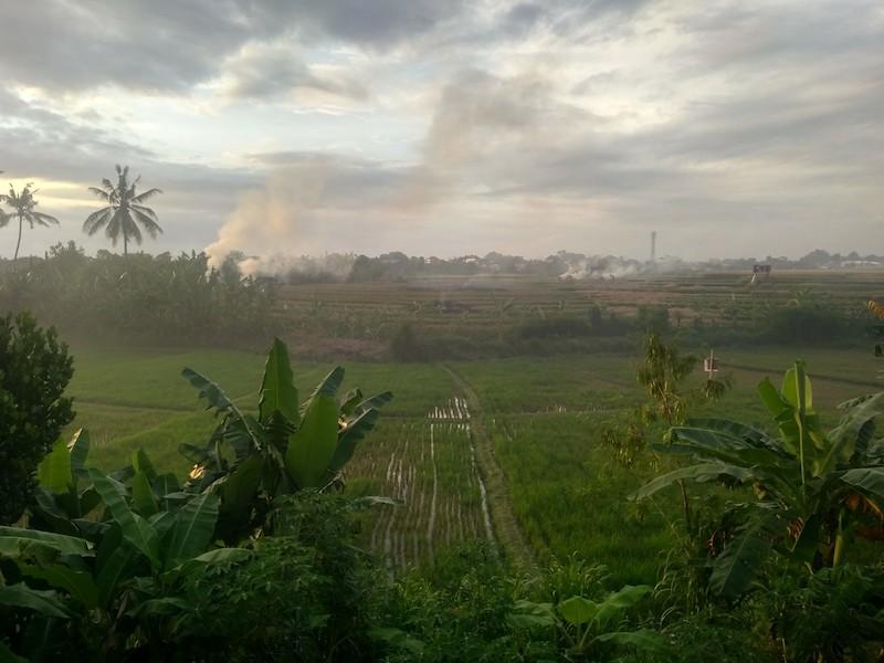 Bali Interiors Build Diary 34 smokey season